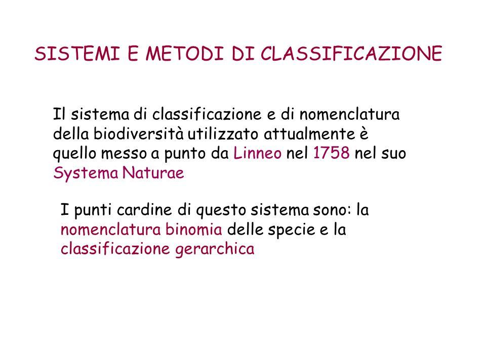 SISTEMI E METODI DI CLASSIFICAZIONE