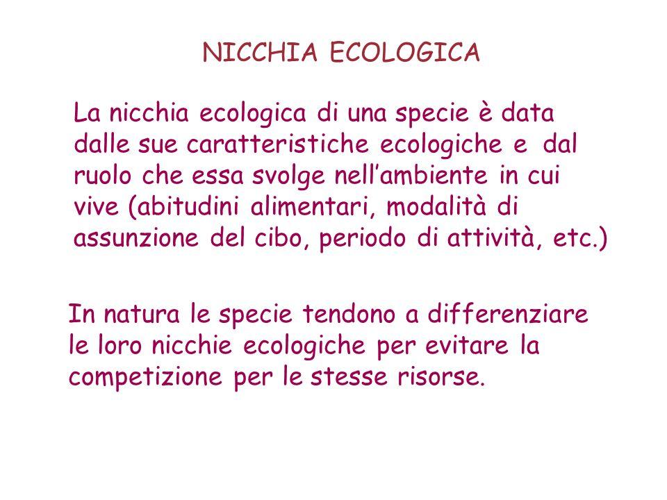 NICCHIA ECOLOGICA