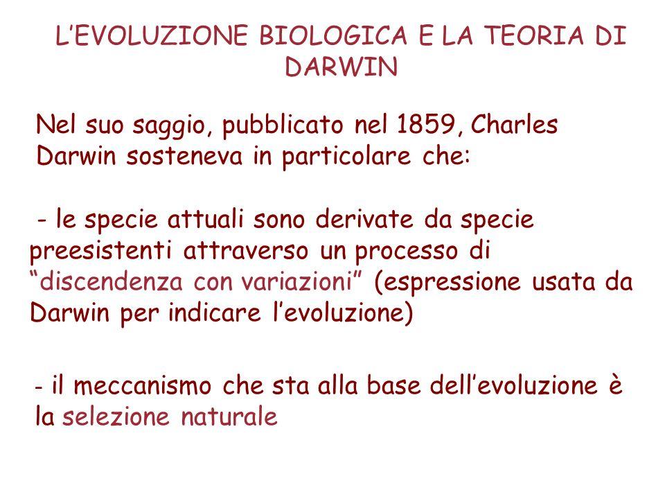 L'EVOLUZIONE BIOLOGICA E LA TEORIA DI DARWIN