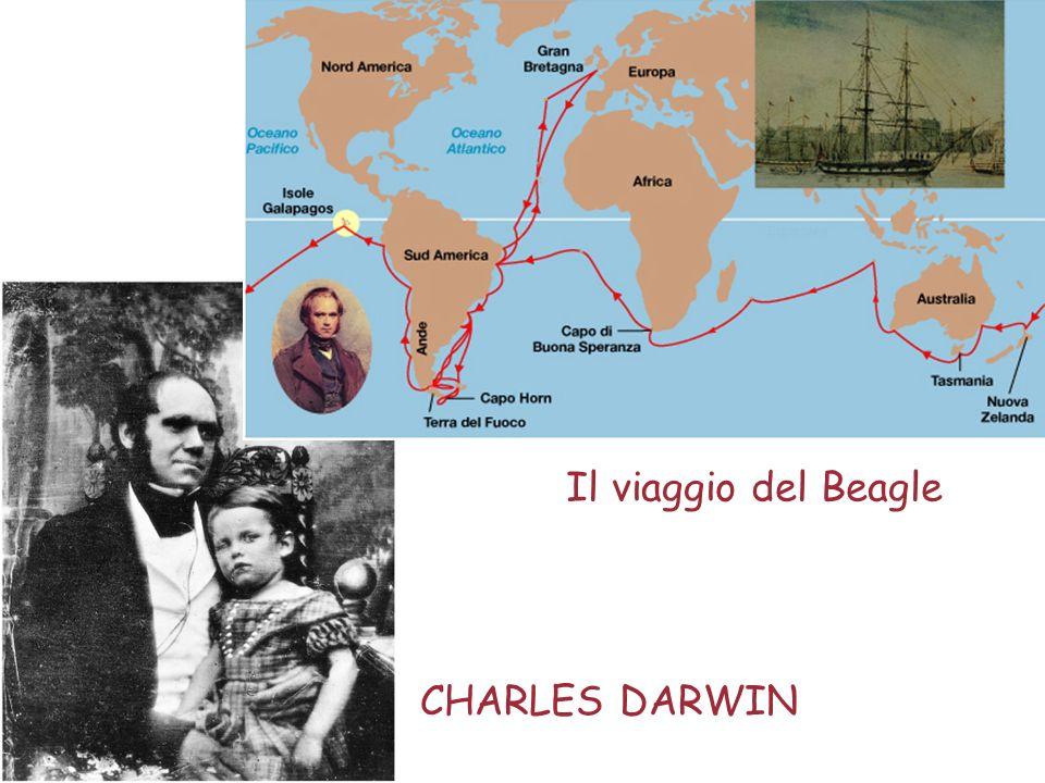 Il viaggio del Beagle CHARLES DARWIN