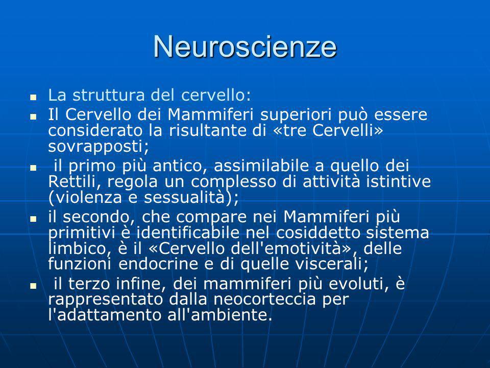 Neuroscienze La struttura del cervello: