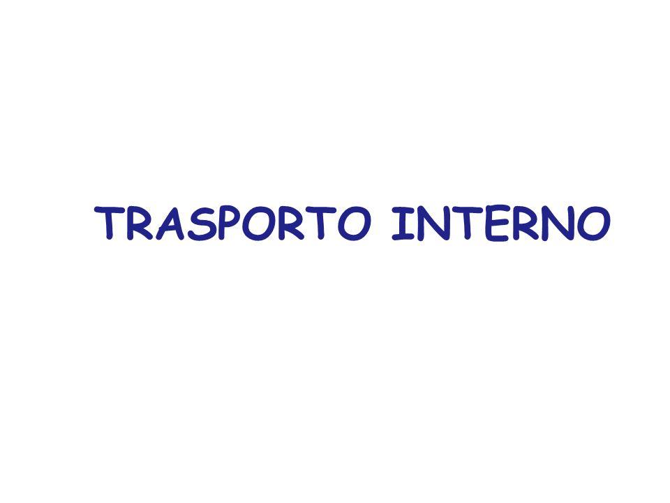 TRASPORTO INTERNO
