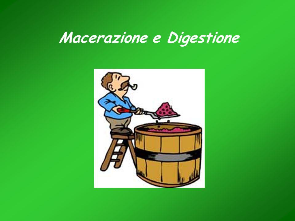 Macerazione e Digestione