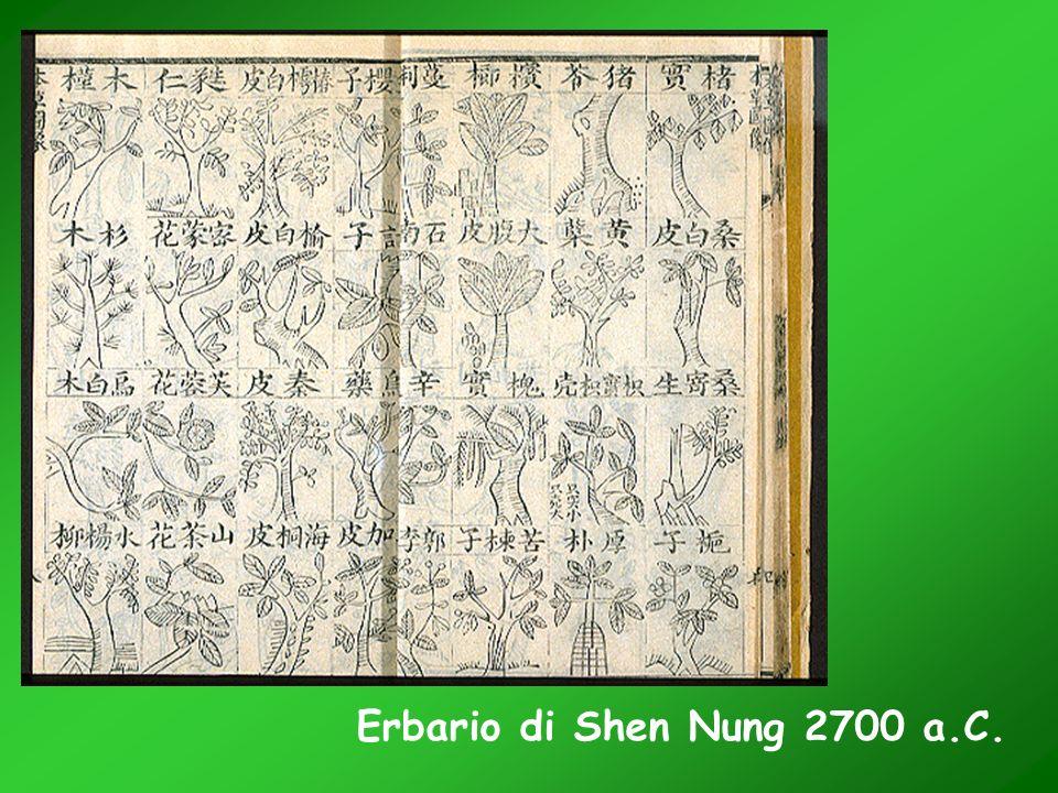 Erbario di Shen Nung 2700 a.C.