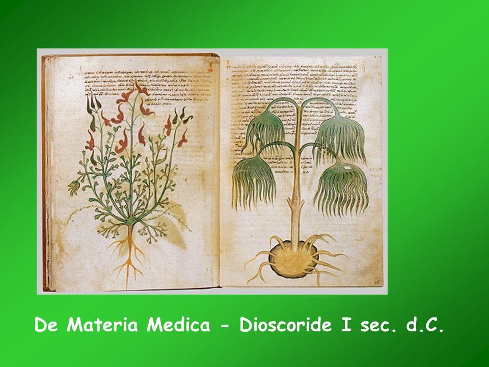 De Materia Medica - Dioscoride I sec. d.C.
