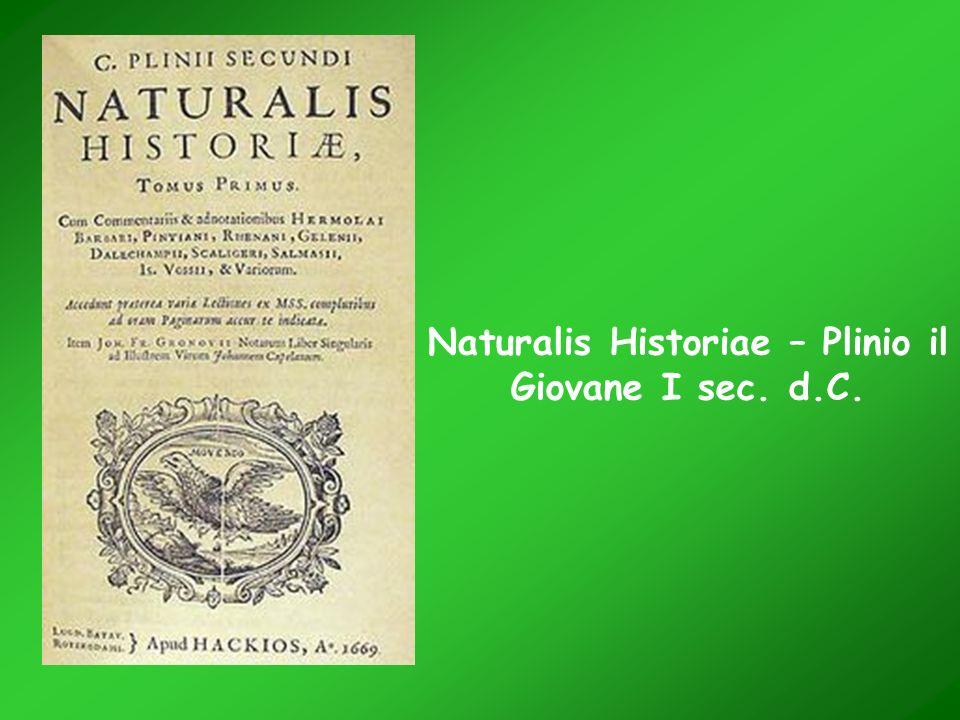 Naturalis Historiae – Plinio il Giovane I sec. d.C.