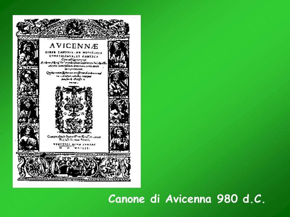 Canone di Avicenna 980 d.C.