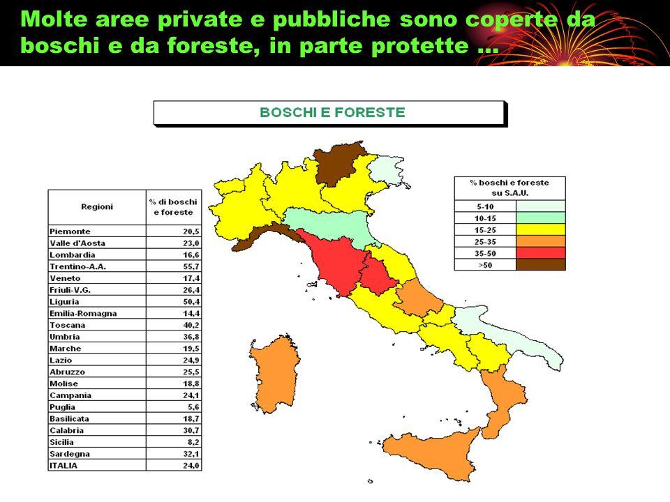 Molte aree private e pubbliche sono coperte da boschi e da foreste, in parte protette …