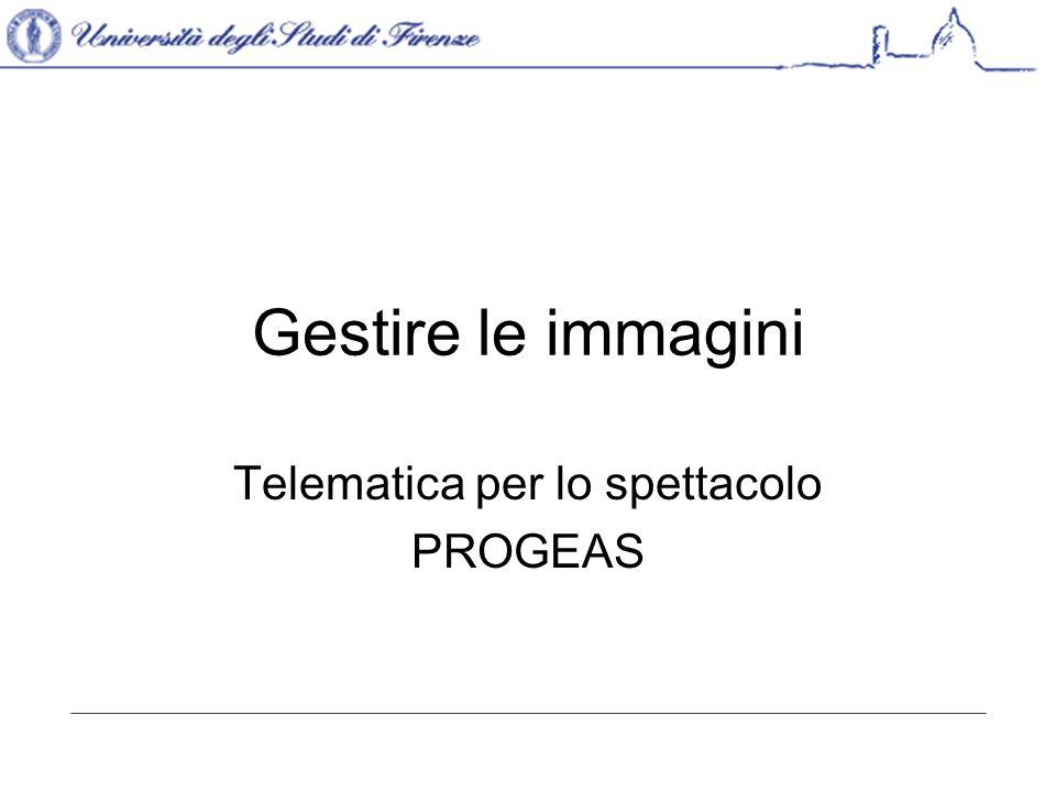 Telematica per lo spettacolo PROGEAS