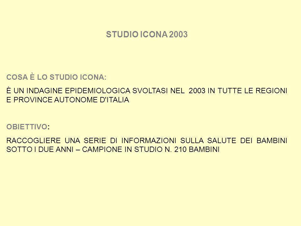 STUDIO ICONA 2003 COSA È LO STUDIO ICONA: