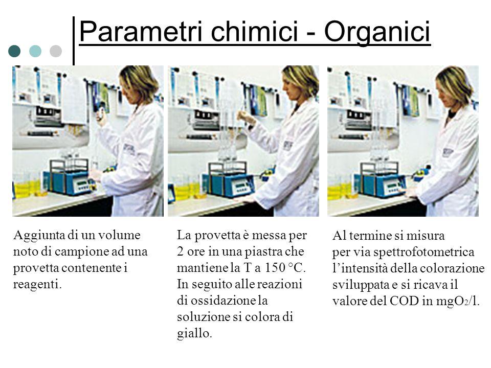 Parametri chimici - Organici