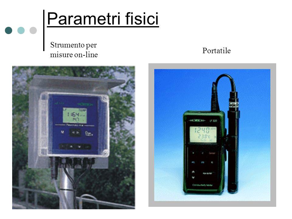 Parametri fisici Strumento per misure on-line Portatile