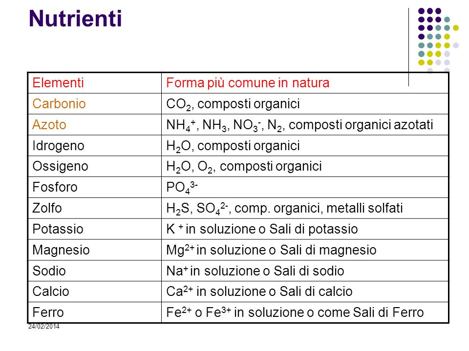 Nutrienti Elementi Forma più comune in natura Carbonio