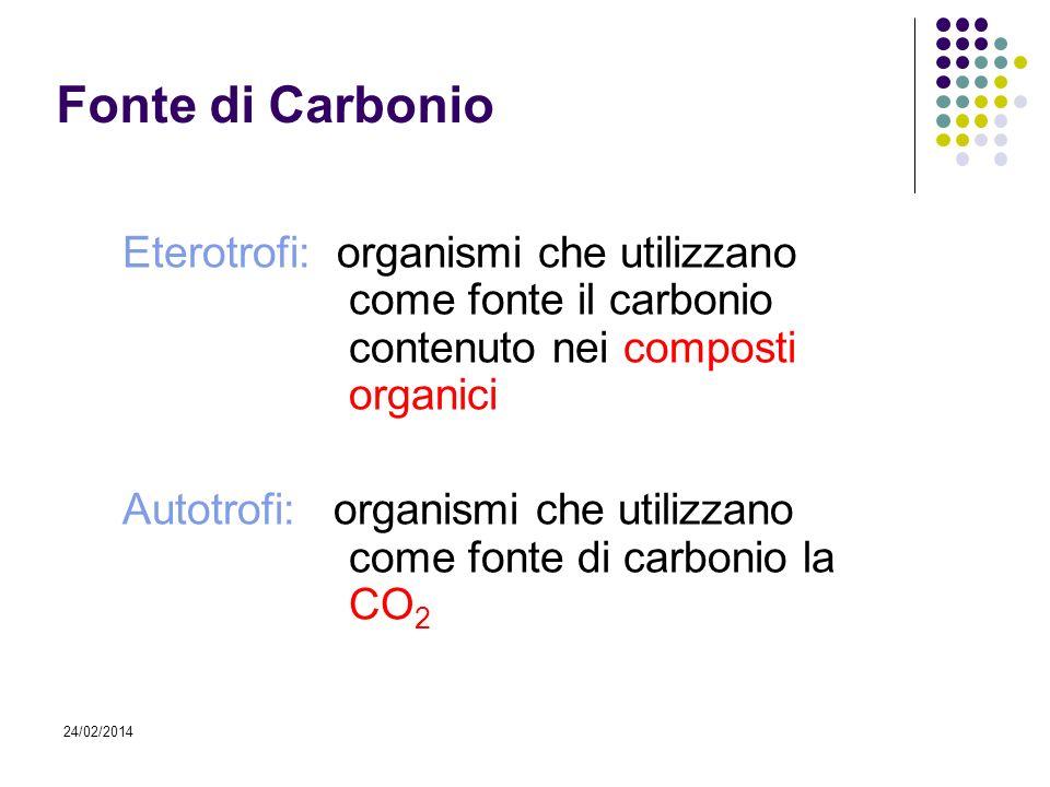 Fonte di Carbonio Eterotrofi: organismi che utilizzano come fonte il carbonio contenuto nei composti organici.