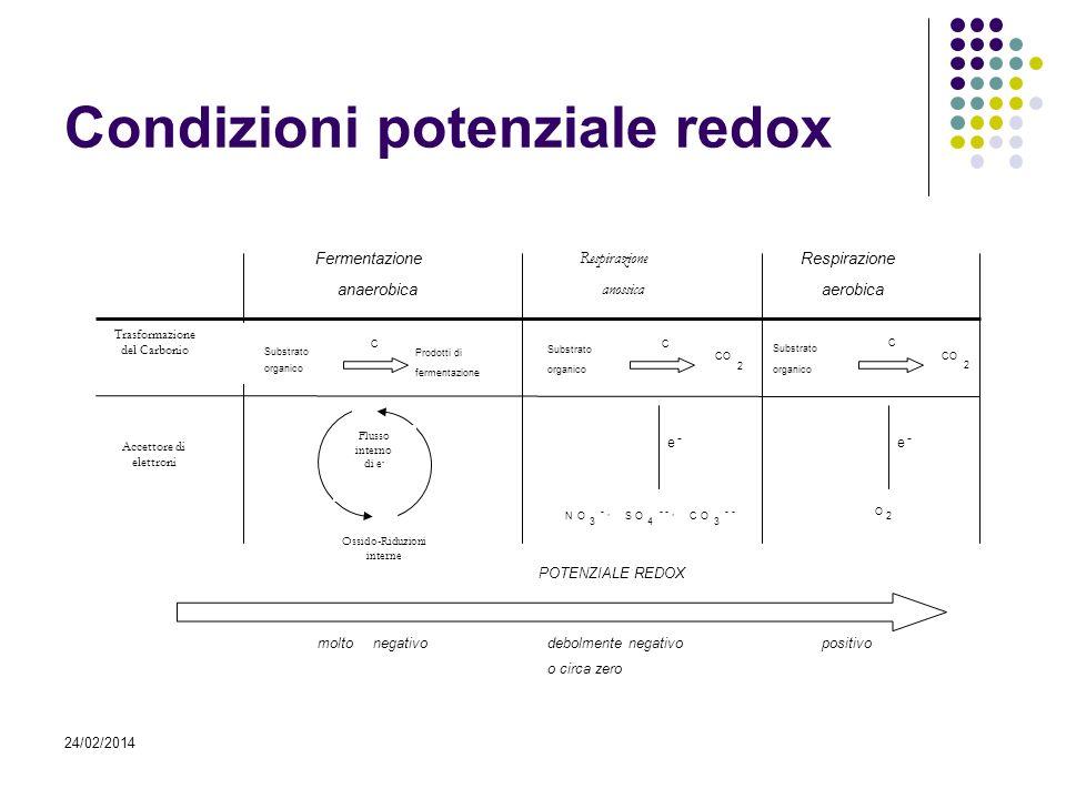 Condizioni potenziale redox