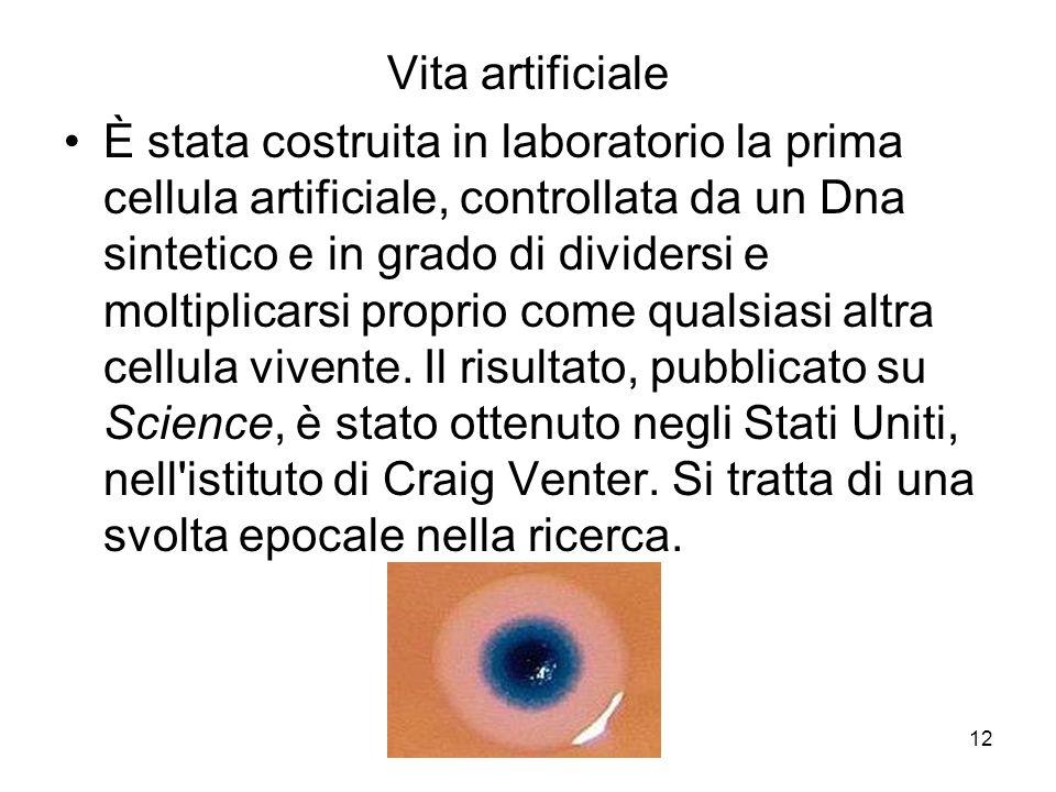 Vita artificiale