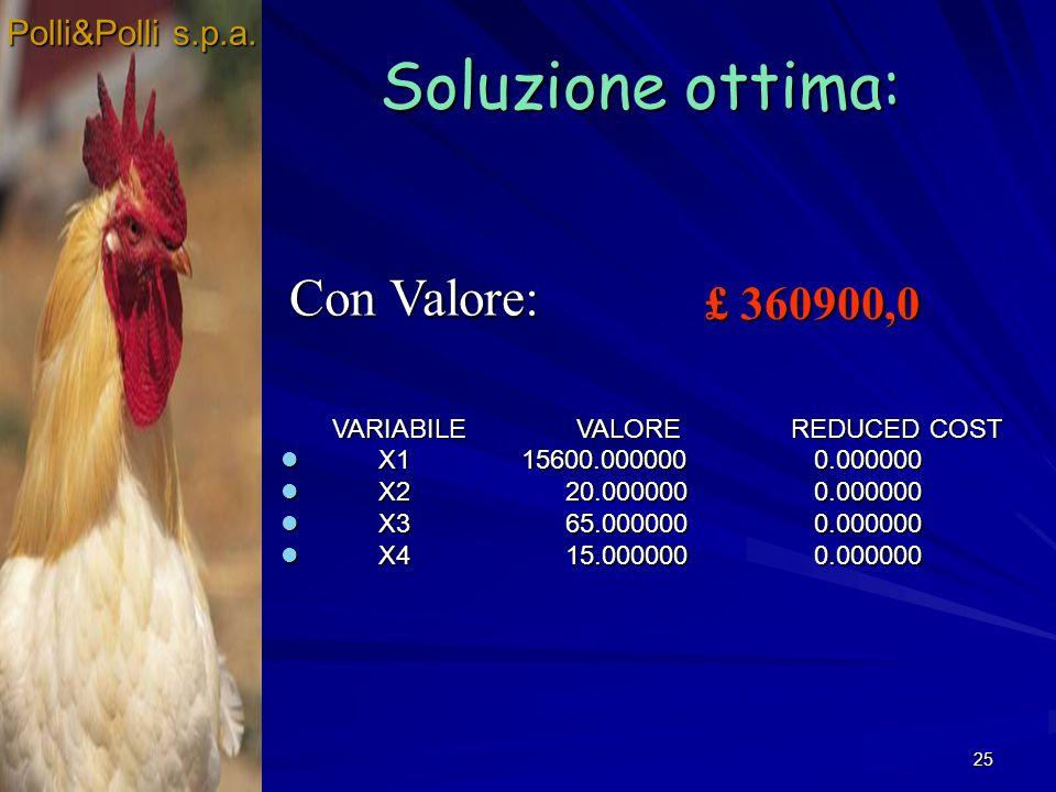 Soluzione ottima: Con Valore: £ 360900,0 Polli&Polli s.p.a.