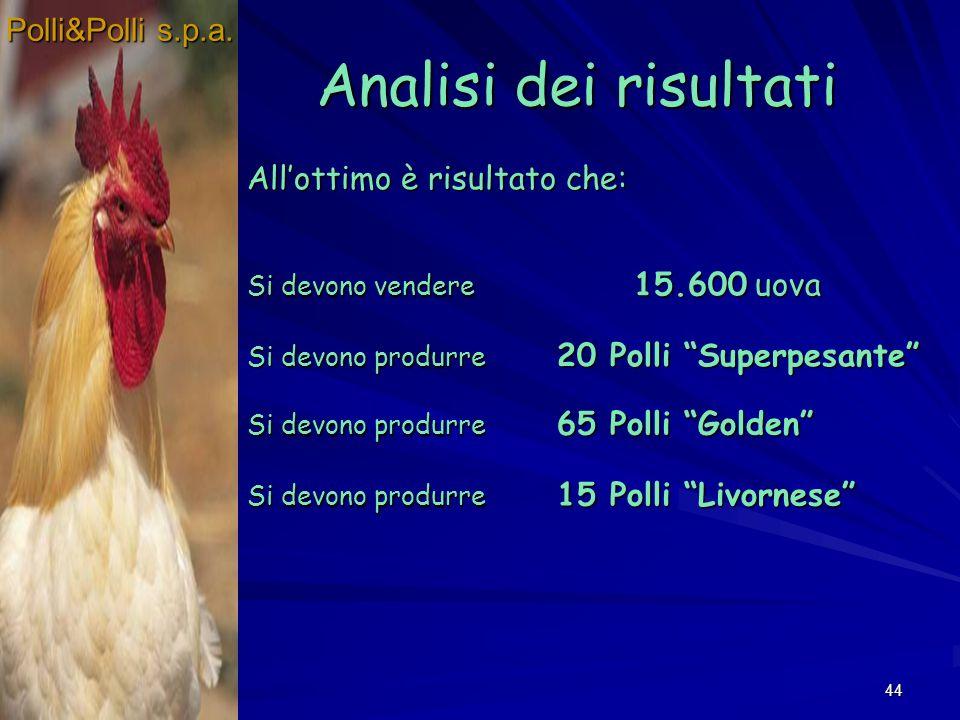 Analisi dei risultati Polli&Polli s.p.a. All'ottimo è risultato che: