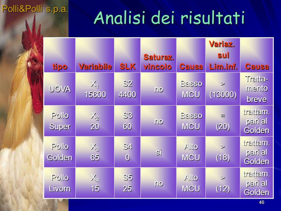 Analisi dei risultati Polli&Polli s.p.a. tipo Variabile SLK