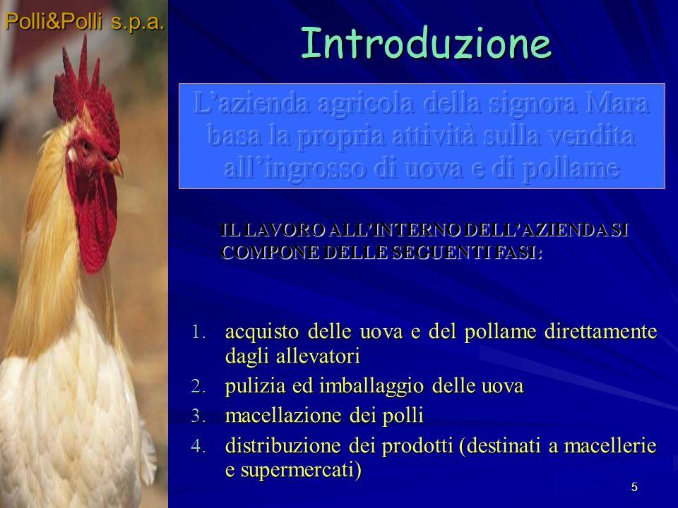 Polli&Polli s.p.a. Polli&Polli s.p.a. Introduzione.