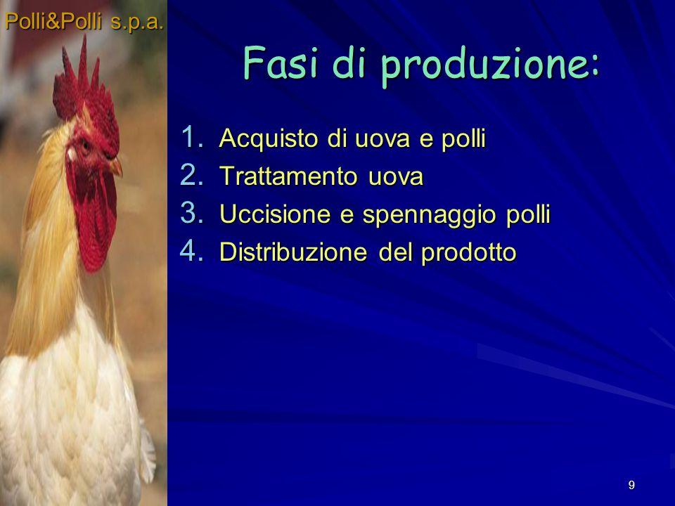 Fasi di produzione: Acquisto di uova e polli Trattamento uova