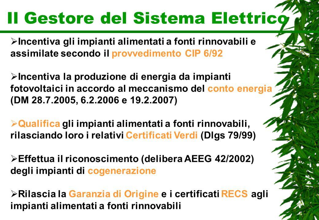Il Gestore del Sistema Elettrico