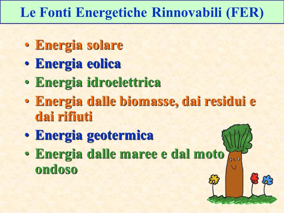 Le Fonti Energetiche Rinnovabili (FER)