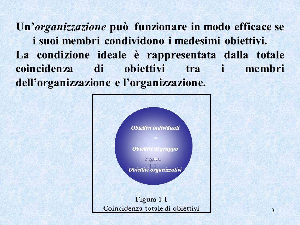 Obiettivi individuali Coincidenza totale di obiettivi