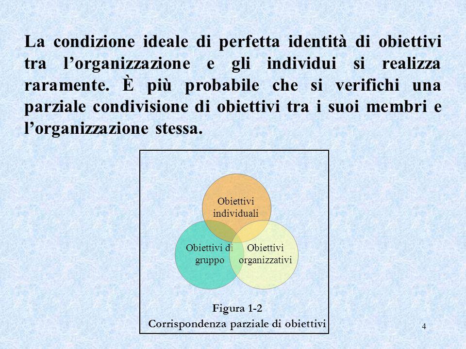 La condizione ideale di perfetta identità di obiettivi tra l'organizzazione e gli individui si realizza raramente. È più probabile che si verifichi una parziale condivisione di obiettivi tra i suoi membri e l'organizzazione stessa.