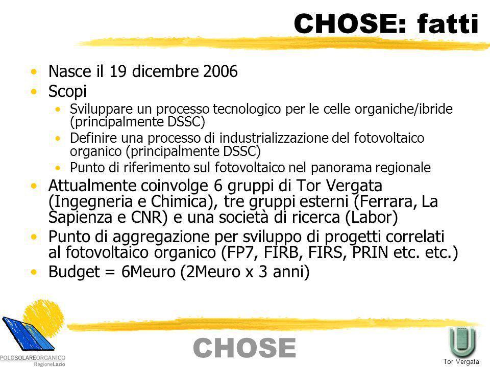 CHOSE: fatti CHOSE Nasce il 19 dicembre 2006 Scopi