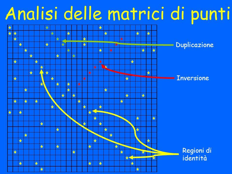 Analisi delle matrici di punti
