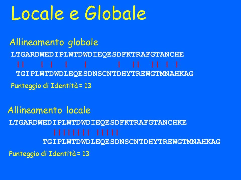Locale e Globale Allineamento globale Allineamento locale