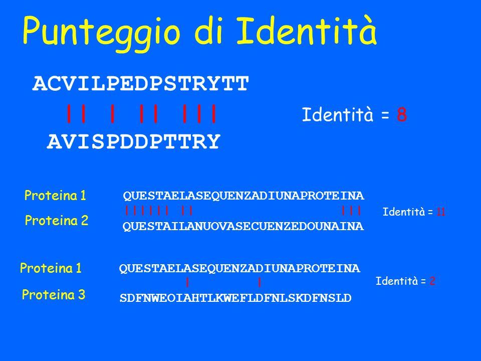 Punteggio di Identità ACVILPEDPSTRYTT || | || ||| AVISPDDPTTRY