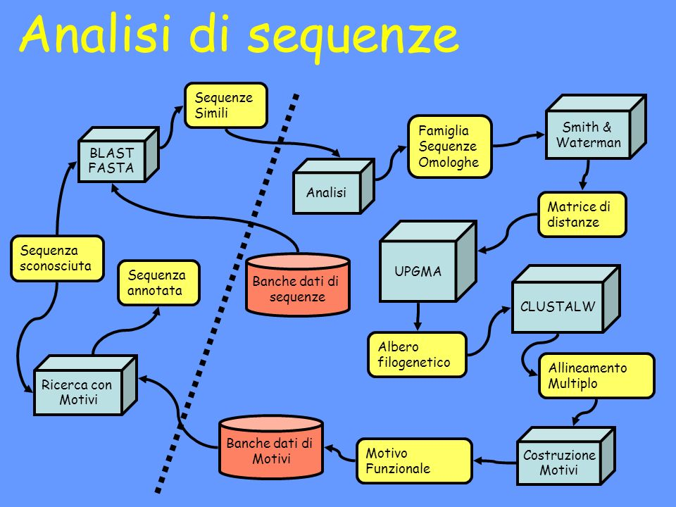 Analisi di sequenze Sequenze Simili Smith & Waterman Famiglia Sequenze