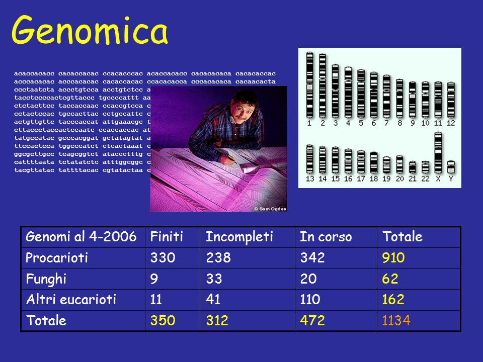 Genomica Genomi al 4-2006 Finiti Incompleti In corso Totale Procarioti