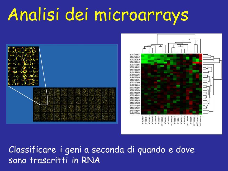 Analisi dei microarrays