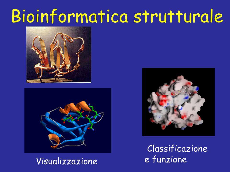 Bioinformatica strutturale