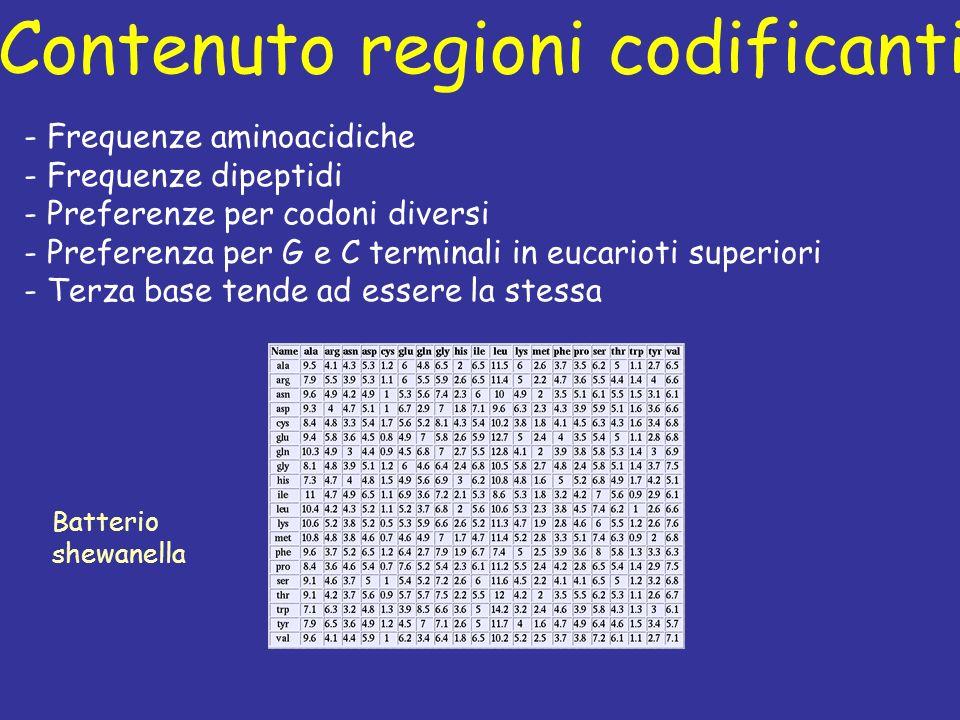 Contenuto regioni codificanti