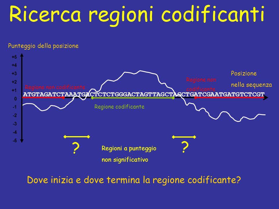 Ricerca regioni codificanti