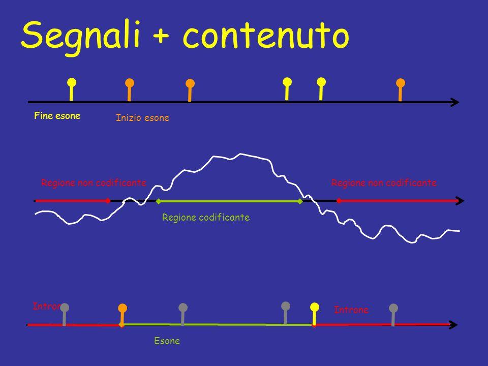 Segnali + contenuto Fine esone Inizio esone Regione non codificante