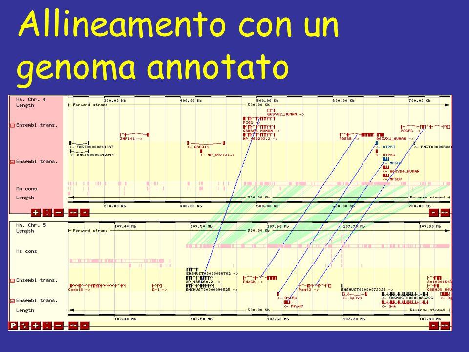 Allineamento con un genoma annotato