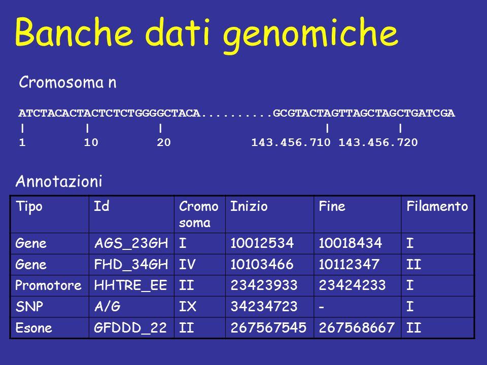 Banche dati genomiche Cromosoma n Annotazioni Tipo Id Cromosoma Inizio