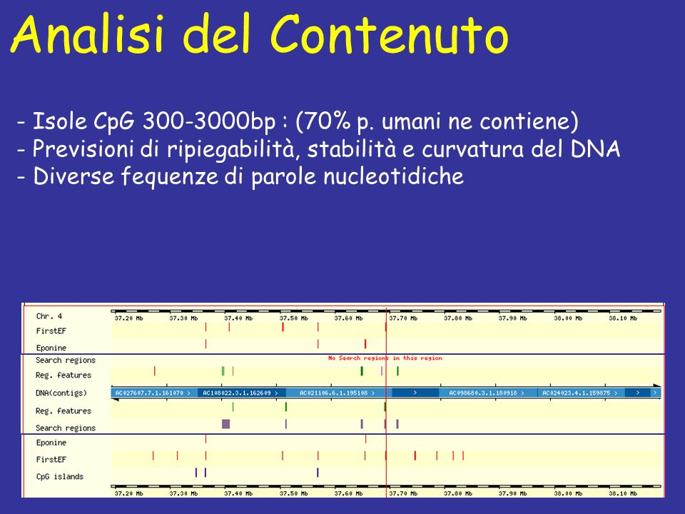 Analisi del Contenuto - Isole CpG 300-3000bp : (70% p. umani ne contiene) - Previsioni di ripiegabilità, stabilità e curvatura del DNA.