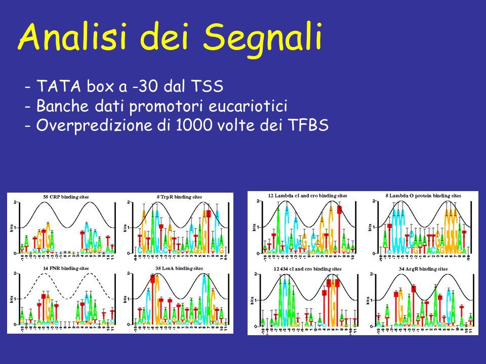Analisi dei Segnali - TATA box a -30 dal TSS