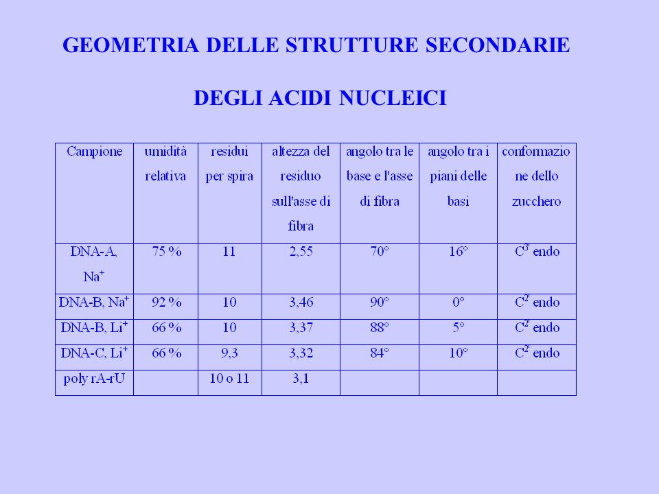 GEOMETRIA DELLE STRUTTURE SECONDARIE