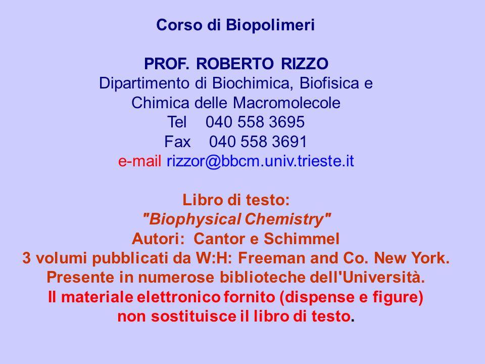 Dipartimento di Biochimica, Biofisica e Chimica delle Macromolecole