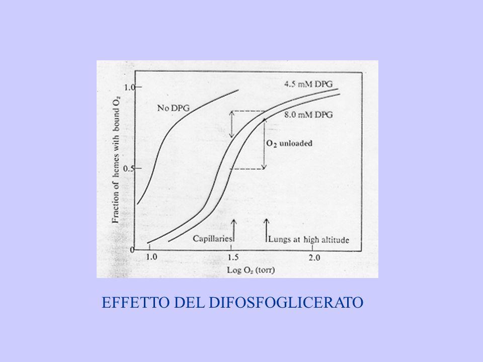 EFFETTO DEL DIFOSFOGLICERATO