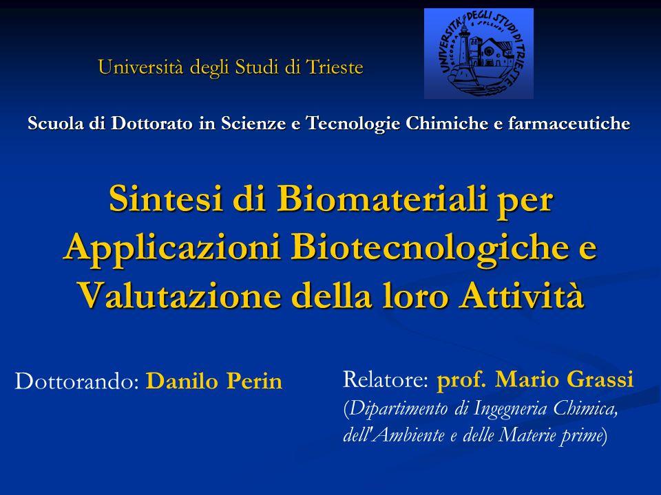 Università degli Studi di Trieste