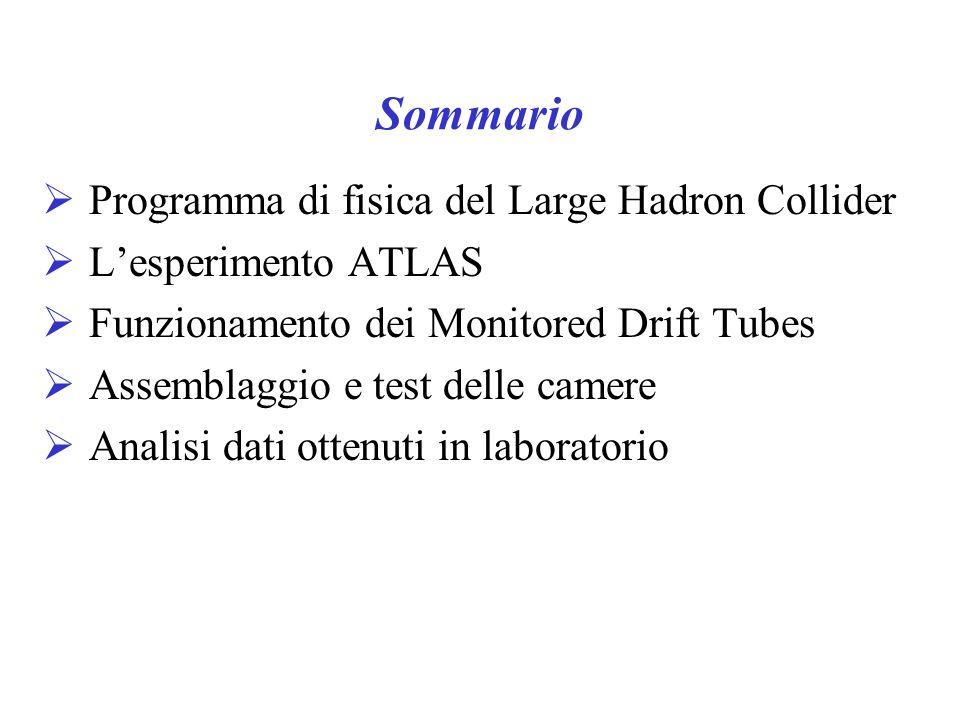 Sommario Programma di fisica del Large Hadron Collider