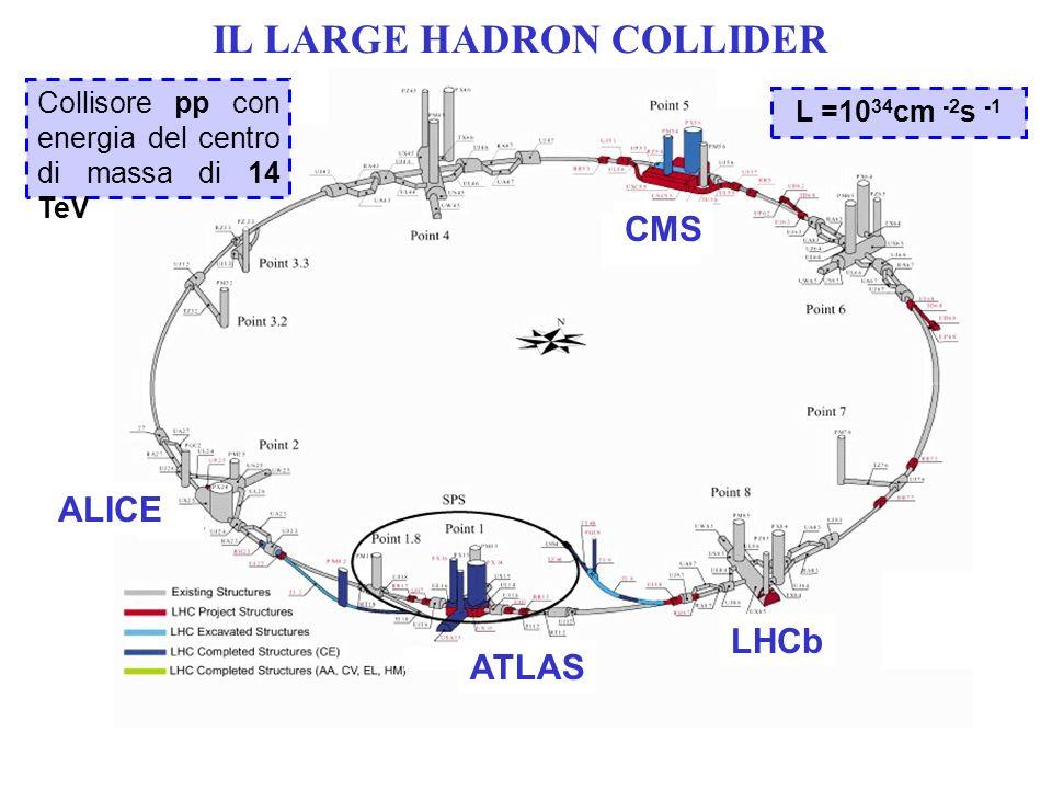 IL LARGE HADRON COLLIDER